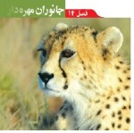 پاورپوینت علوم نهم (فصل ۱۴) جانوران مهره دار-1
