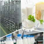 کارآفرینی صنایع فرآورده های لبنی-1
