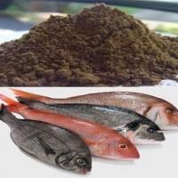 کارآفرینی تولید پودر و روغن ماهی