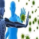 پاورپوینت ايمني در برابر ميکروب ها